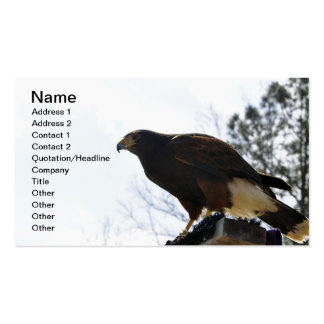 Red Tailed Hawk Against a Blue Sky Business Sky Business Card Template