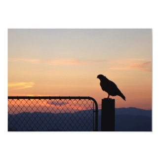 Red-tailed Hawk at Sunset 13 Cm X 18 Cm Invitation Card