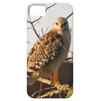 Red Tailed Hawk Barely There iPhone 5/5S Case