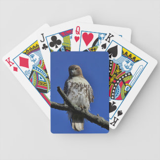 Red-tailed Hawk Bicycle Playing Cards