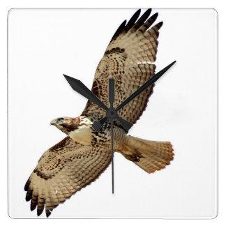 Red Tailed Hawk Bird Wildlife Animal Wall Clock