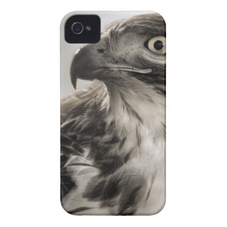 Red-tailed Hawk Blackberry Case