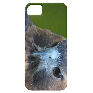 Red-tailed Hawk iPhone 5 Cover