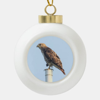 Red-tailed Hawk Ceramic Ball Decoration