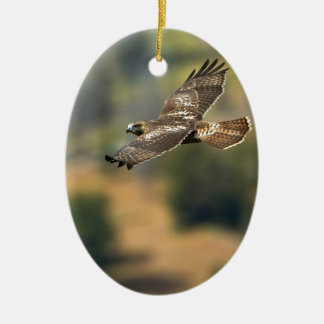 Red-tailed Hawk Ceramic Ornament