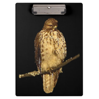 Red Tailed Hawk Clipboard