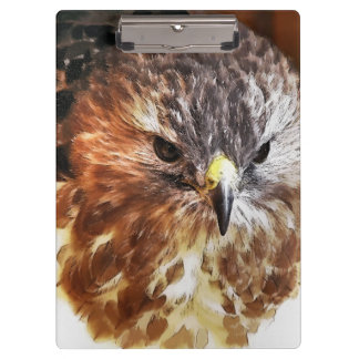 RED TAILED HAWK CLIPBOARDS