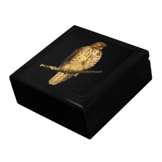 Red Tailed Hawk Gift Box