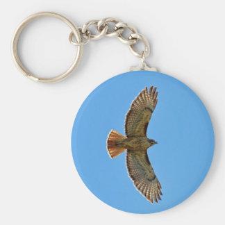Red-Tailed Hawk in Flight Key Ring