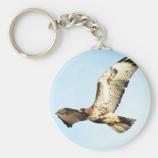 Red-tailed Hawk in Flight Photo Basic Round Button Key Ring