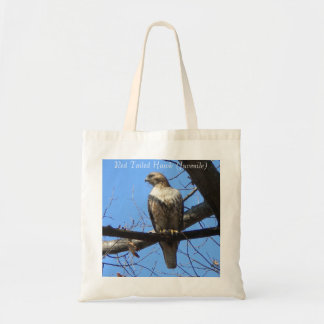 Red Tailed Hawk (Juvenile) Tote bag