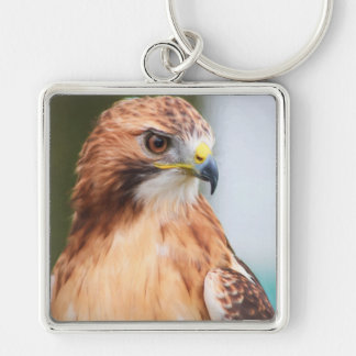 Red Tailed Hawk Key Ring