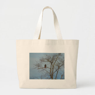 Red Tailed Hawk Large Tote Bag