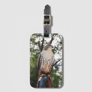 Red-Tailed Hawk Luggage Tag