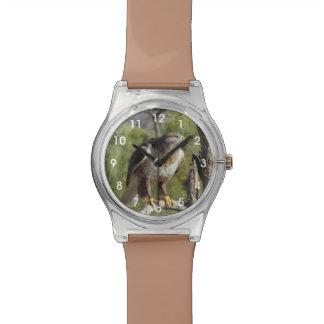 Red Tailed Hawk Wristwatch