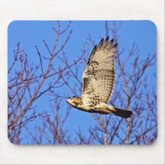 Red-Tailed Hawk Mousepad