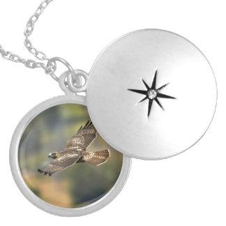Red-tailed Hawk Round Locket Necklace