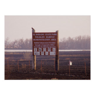 Red Tailed Hawk On Sign Print