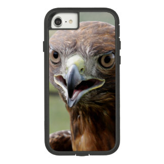 RED TAILED HAWK OTTER CASE 8/7