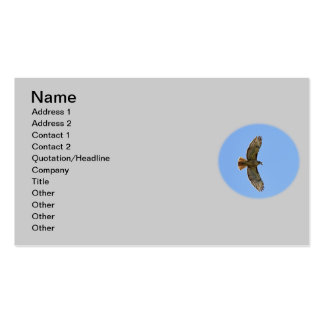 Red-Tailed Hawk Photo Business Card