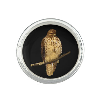 Red Tailed Hawk Photo Ring