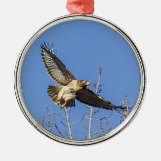 Red-tailed Hawk Silver-Colored Round Decoration