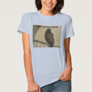 RED TAILED HAWK T-SHIRTS