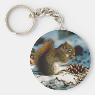 Red Tailed Squirrel Basic Round Button Key Ring