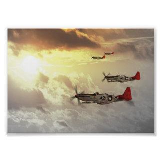 Red Tails.jpg Art Photo