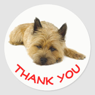 Red Thank You Cairn Terrier Puppy Dog Classic Round Sticker