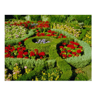 Red The Knot Garden, New Place, Stratford-on-Avon, Postcard
