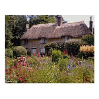 Red Thomas Hardy's cottage, Dorset, England flower Postcard