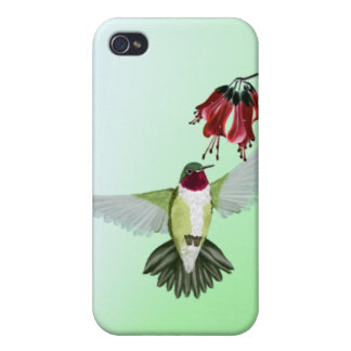 Red Throated Hummingbird 441__P Covers For iPhone 4