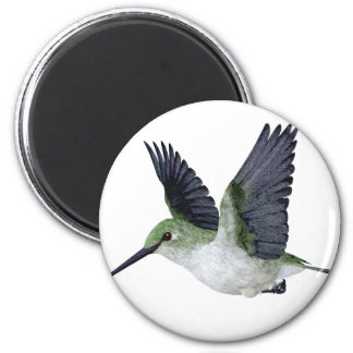 Red Throated Hummingbird Female Magnets