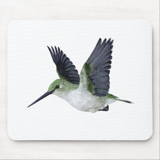 Red Throated Hummingbird Female Mouse Pads