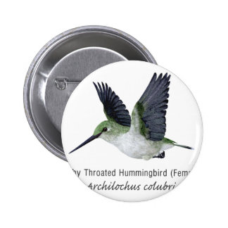 Red Throated Hummingbird Female with Name Pins