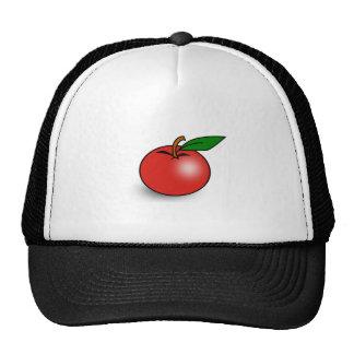 Red Tomato Mesh Hat