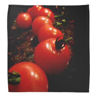 Red Tomato Kerchiefs