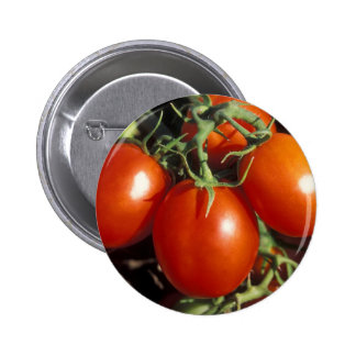 Red Tomatoes Pinback Button