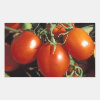 Red Tomatoes Rectangular Sticker