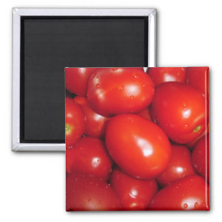 Red tomatoes square magnet