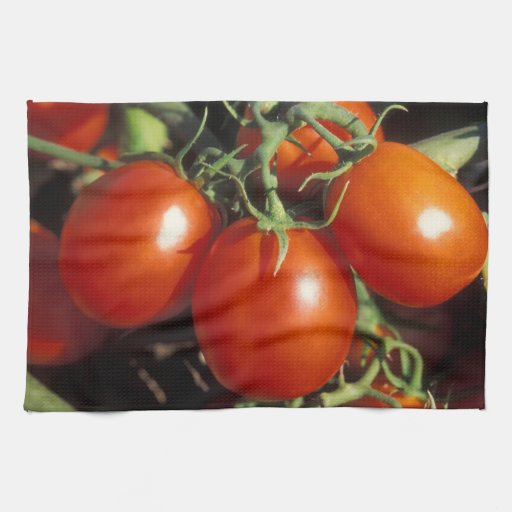 Red Tomatoes Towel