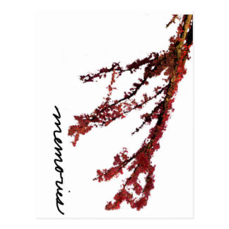 Red tree branch with memories postcard
