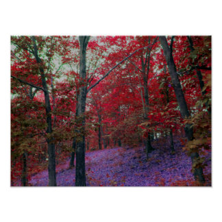Red Tree Forest Poster