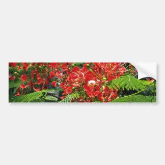 Red Tropical Flowers flowers Bumper Sticker