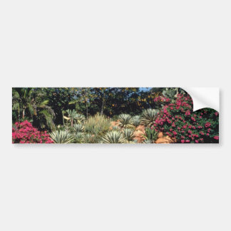 Red Tropical gardens in the city of Madurai, India Bumper Stickers