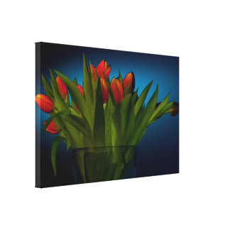 Red Tulip Bouquet with Dark Blue Background Canvas Print