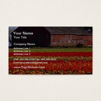 Red Tulip farm, Mt. Vernon, Washington flowers Business Card