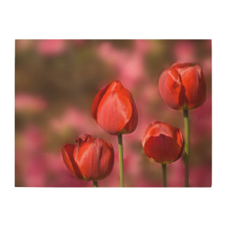 Red Tulip Flower Quartet Wood Wall Decor