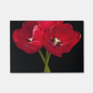 Red Tulip Flowers Black Background Floral Flower Post-it Notes